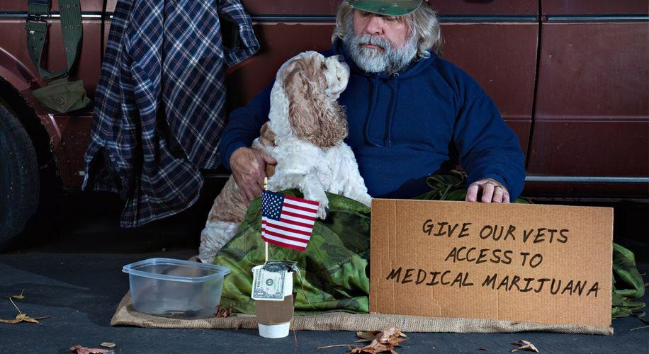 Veterans One Step Closer to Gaining Access to Marijuana for Medicine