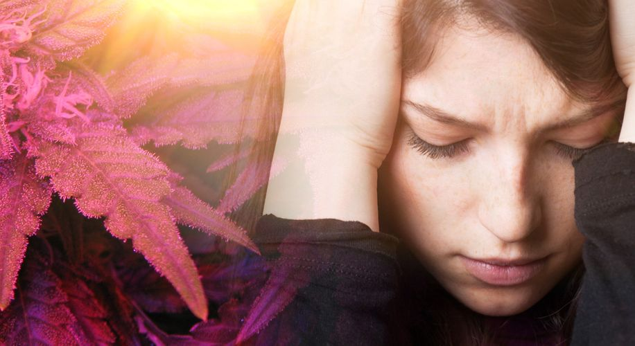 Cannabis's Unique Relationship with Anxiety