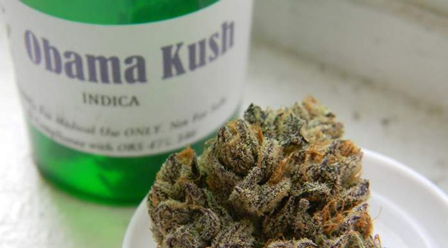 Cannabis Strain Names Have the Most Fascinating Origin Stories!