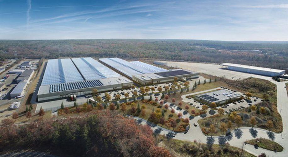 Million-Square-Foot Marijuana Grow Facility to Open in Massachusetts