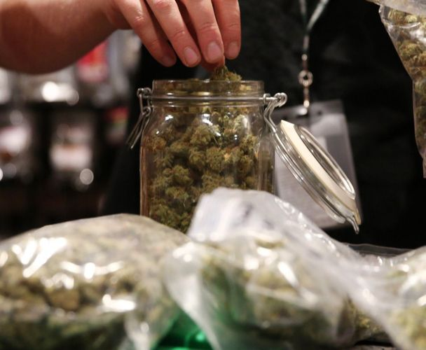 California Cautioned Over Size of Cannabis Industry