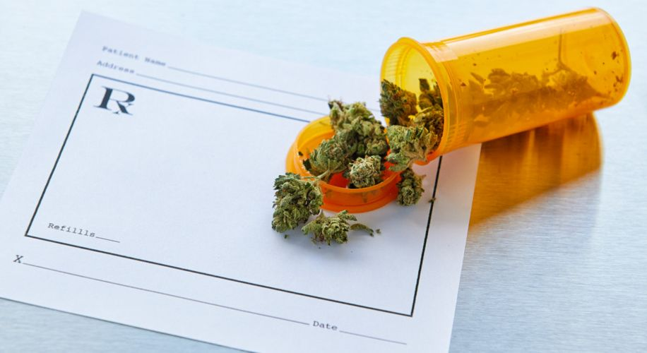 University of Maryland's School of Pharmacy Now Offers Medical Marijuana Training