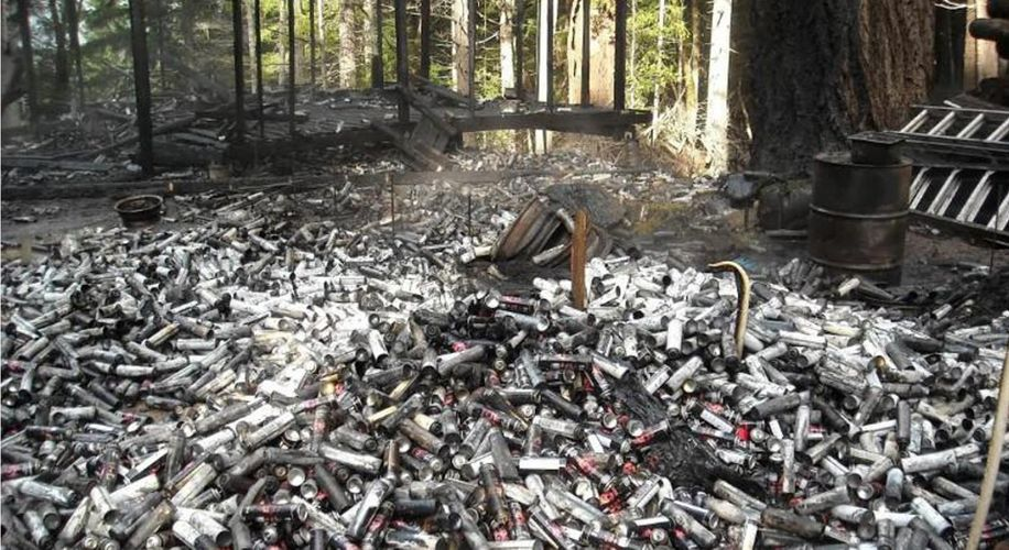 Toxic Waste From Illegal Marijuana Farms Is Polluting California Forests