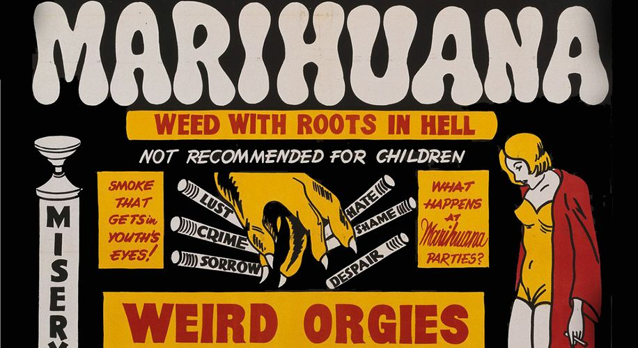 """""""Grass Roots"""" Traces the History of Marijuana Legalization Activism — and Those Who Tried to Stop It"""