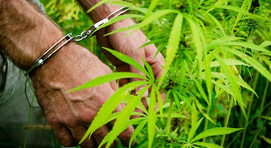 Jackson, Mississippi Votes to Decriminalize Cannabis