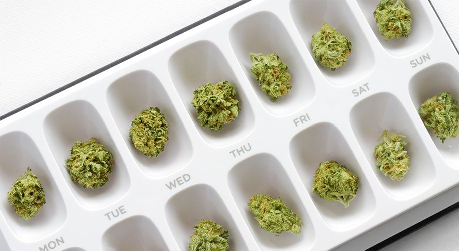 Pot for Pain: Patients in Colorado and Illinois Could Soon Trade Opioid Prescriptions for Cannabis