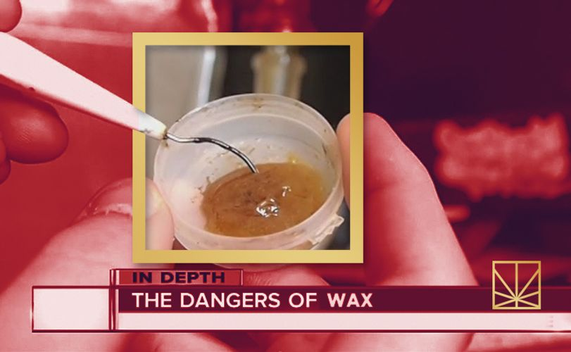 Shatter Madness: 5 Myths About Concentrates