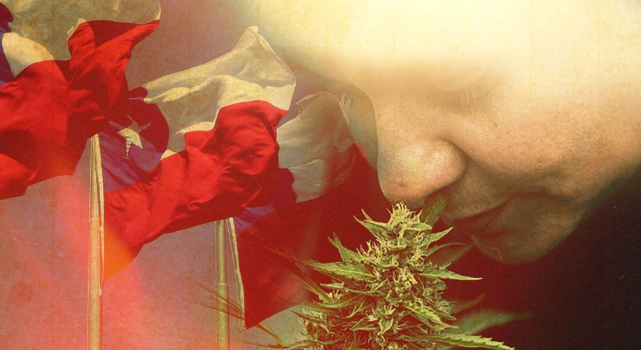 Wide World of Cannabis: The Women Behind Weed Legalization in Chile