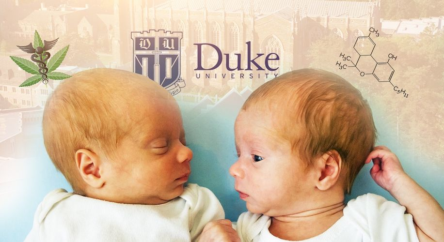 Duke University Uses Identical Twins to Prove Weed Doesn't Make Kids Dumb