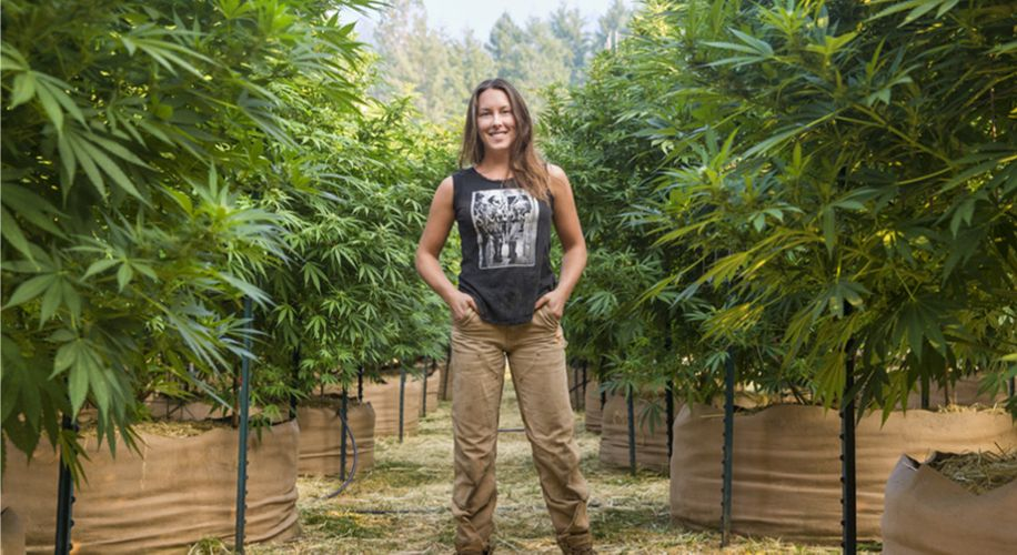 Craft Cannabis: How Loudpack Is Helping Small Pot Farmers Survive in California
