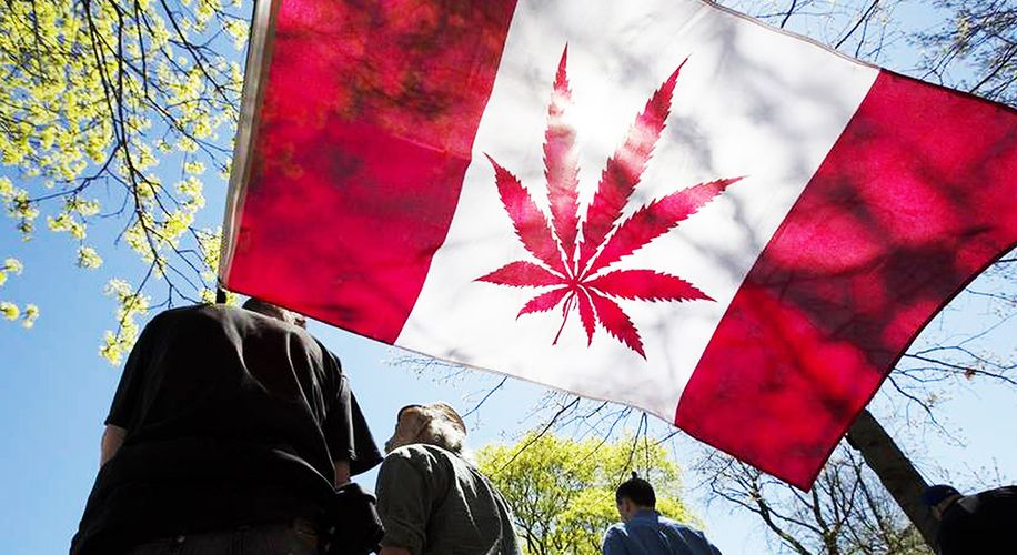 Canada Wants to Pardon Cannabis Possession Charges, but Is That Enough?