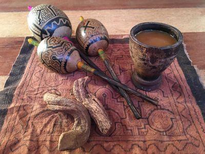 1556657753448_ayahuasca-ceremony-02-026.jpg