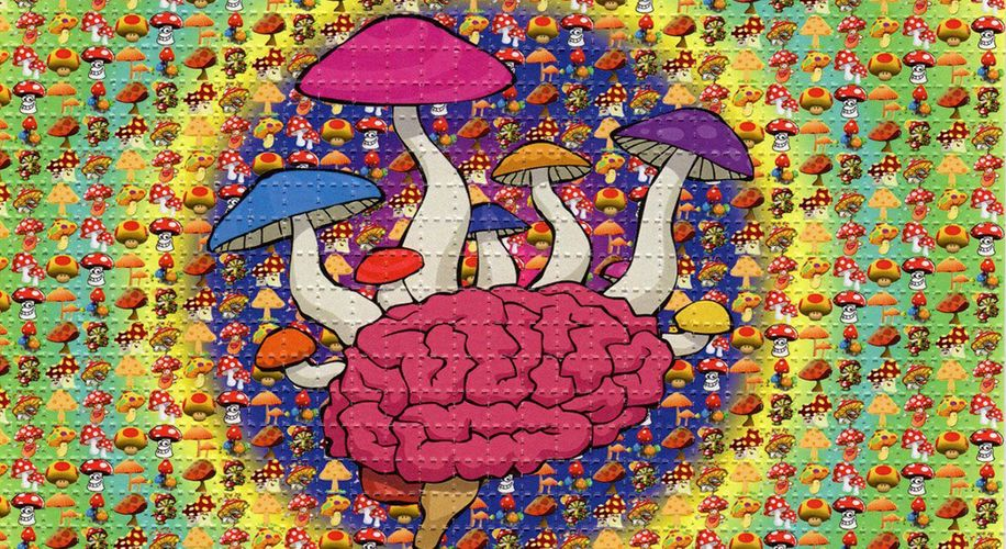 LSD and Psilocybin Can Help Alcoholics Stop Drinking, Study Says