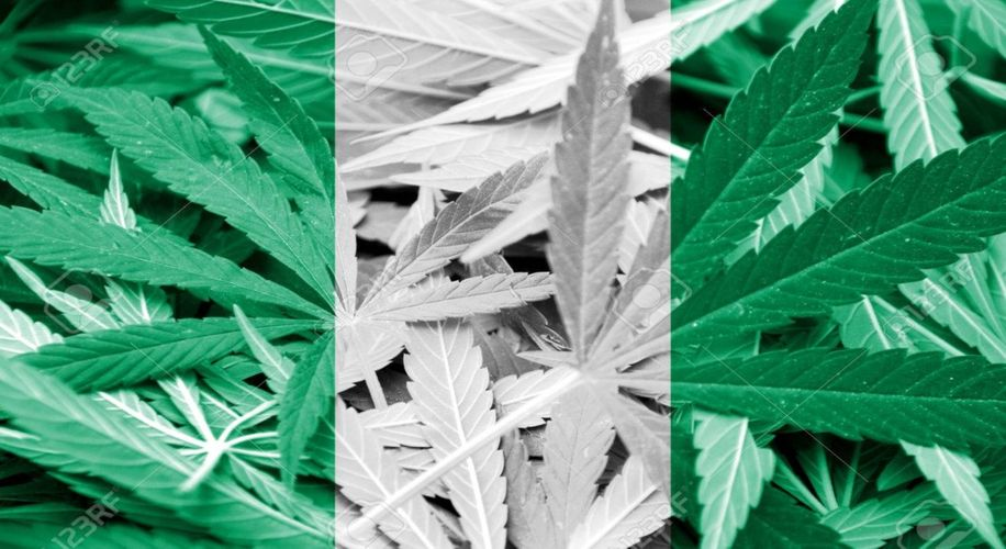 Nigerian State Unveils New Medical Marijuana Program