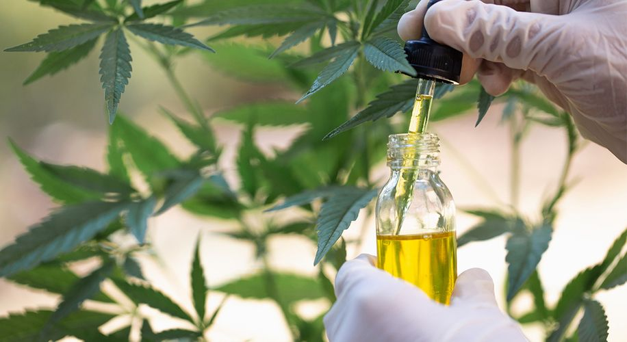 How Can CBD Oil Help with Pain Relief?
