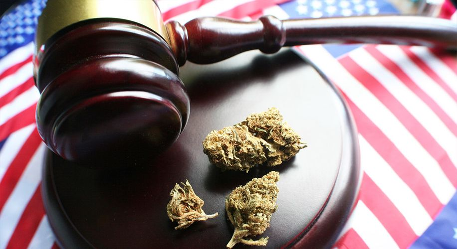 Prohibition Lives: A Man Did Jail Time in a Legal State for Selling Bud 6 Years Ago