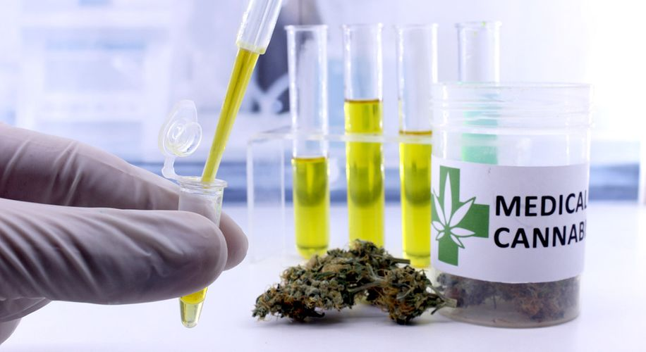 Scientists Sue DEA for Delaying Weed Research