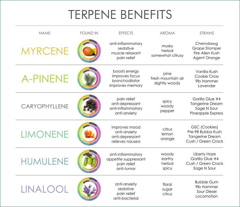 1563219596481_cannabis-terpene-benefits.jpg