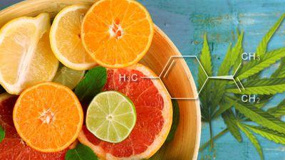 1564605008770_limonene-terpene.jpg