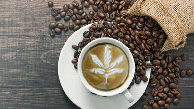 1564613186004_a-whole-new-world-how-coffee-and-cannabis-pair-together-greencamp.jpg