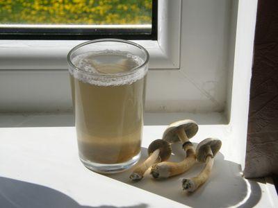1570833573859_Mushroom_tea.jpg