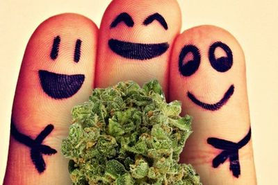 1571348137064_29-reasons-smoking-weed-good-28.jpg