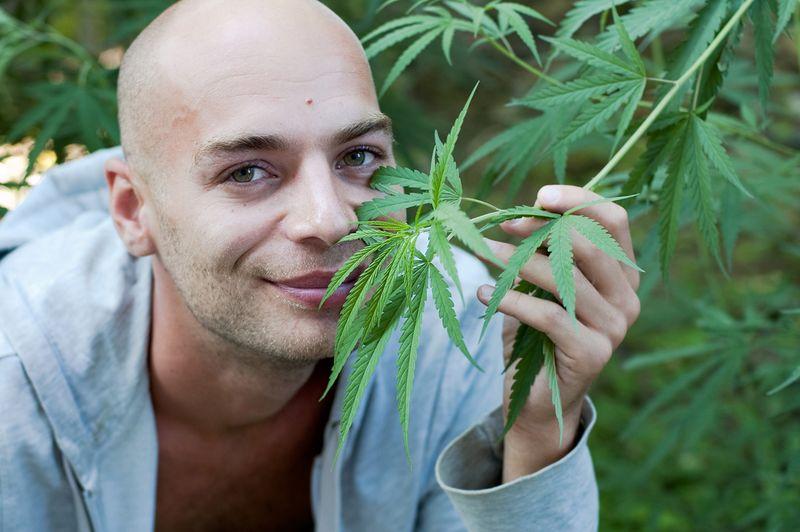 1578525576509_Cannabis-and-cancer-1.jpg