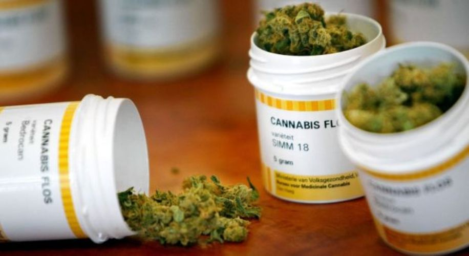 Scotland Opens First Medical Cannabis Clinic to Treat Chronic Pain