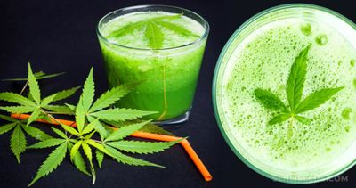 1582670495995_exactly-cannabis-juice-work-1024x540.jpg