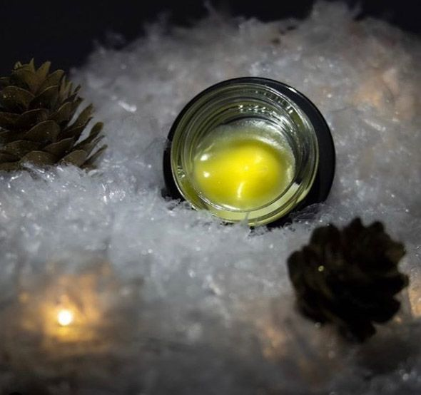 1582067090602_caption-cooler-temps-lock-in-an-extracts-terpene-profile-photo-by-boro-vision.jpg