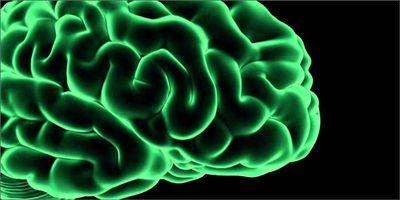 1583960892409_reasons-why-brain-loves-cannabis-hero.jpg