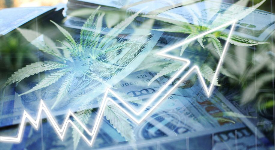 Who's Really Making Money From Legal Weed? It's Not the Farmers