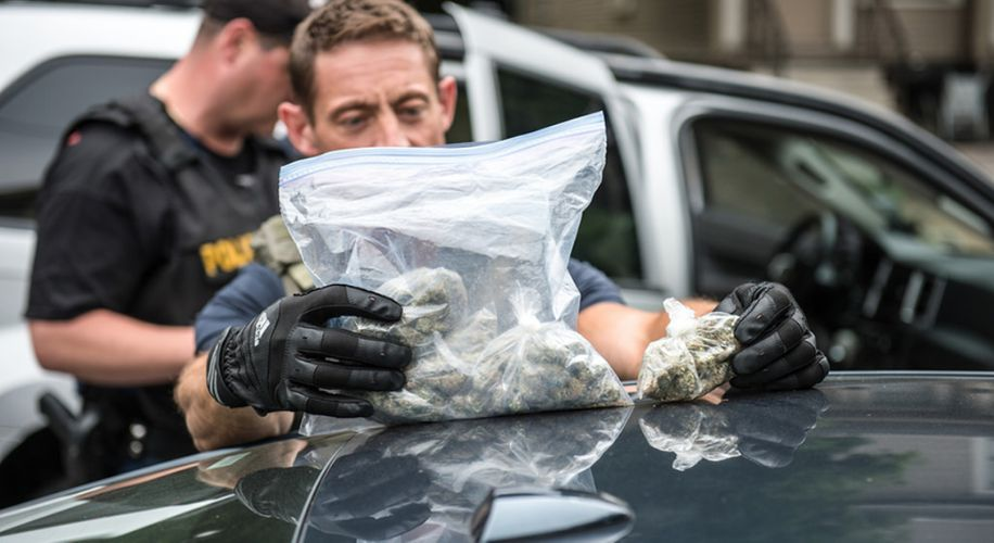 The Smell of Weed Does Not Justify Warrantless Searches, New Study Proves