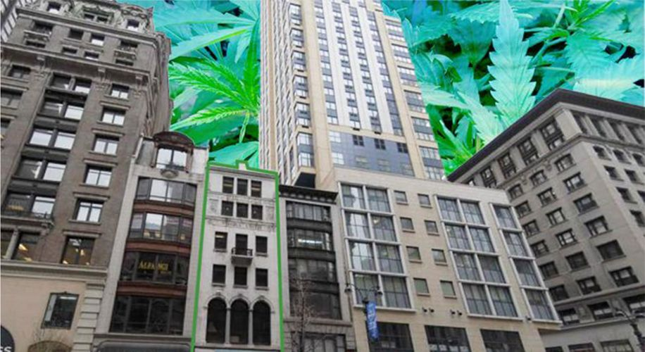 Despite Coronavirus, New York's Governor Is Still Pushing for Weed Legalization
