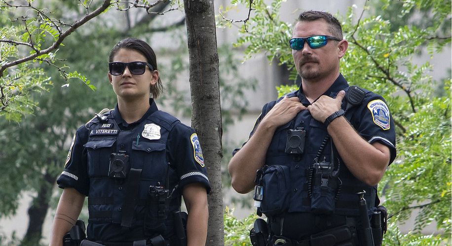 Maine Wants to Create a Marijuana Crime Cop Unit and the Weed Industry Is Pissed