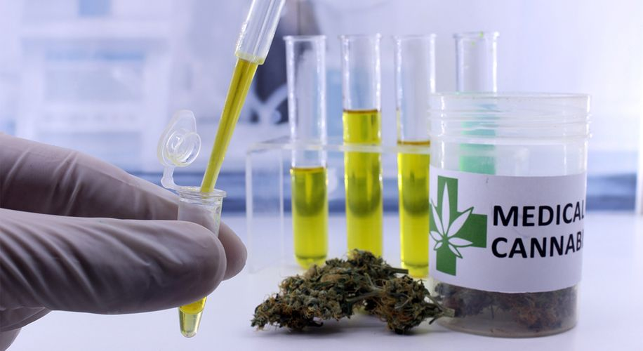 Can Cannabinoids Treat COVID-19 Symptoms? Canadian Scientists Want to Find Out