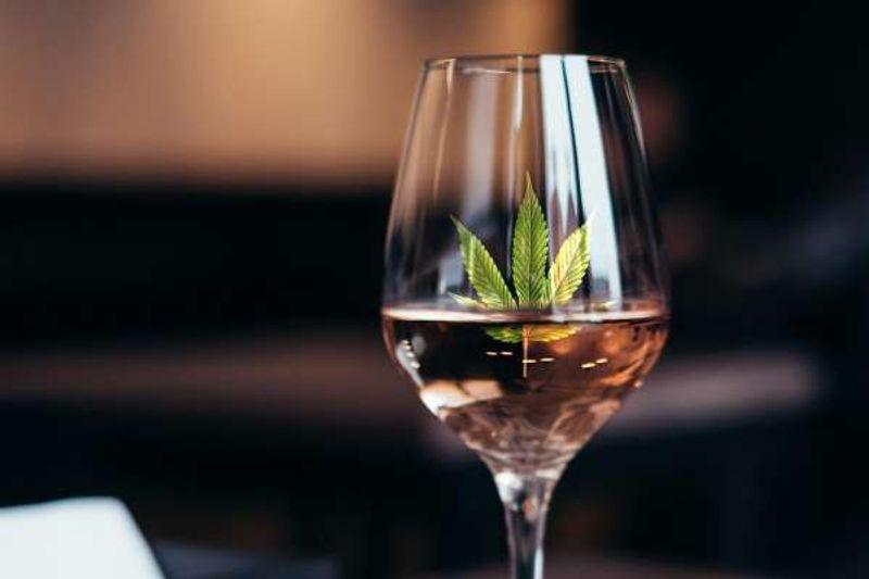 marijuana infused wine