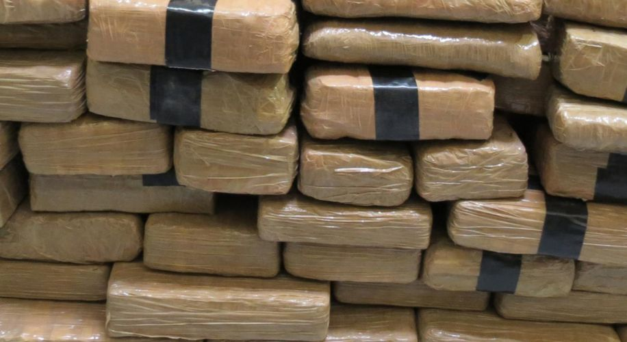 Jamaica Just Made the Biggest Weed Bust in the Nation's History