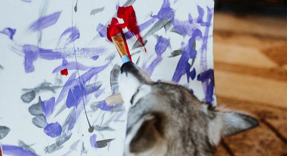 Buy a Painting Made by a Dog, Get Free Weed at This Washington DC Art Gallery