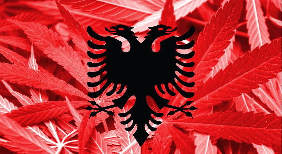 Albania, Former Pot Trafficking Hub, Is Ready to Legalize Medical Marijuana
