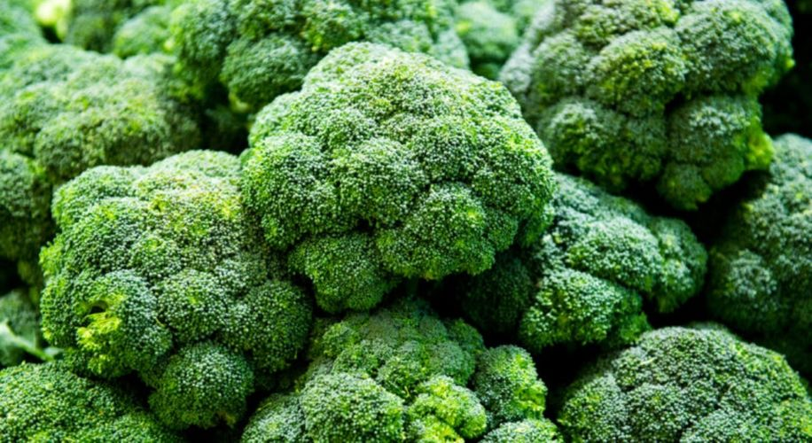 The Feds Just Busted a Broccoli Shipment Hiding $630K Worth of Weed