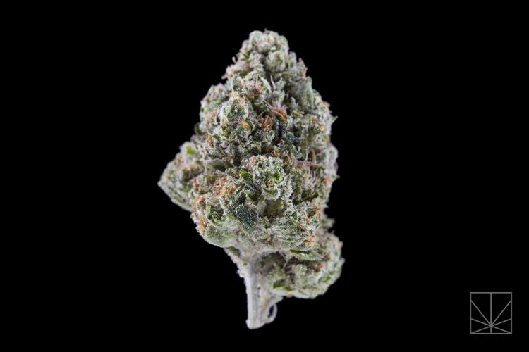 What Is Godfather OG Weed and Is This Strain Really as Gangsta as It Sounds?