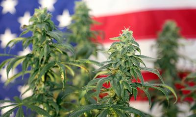 1600982864667_420-bill-federally-legalize-marijuana-has-officially-been-introduced-featured.jpg