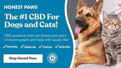 1618604244116_01-honest-paws-cbd-dogs-cats-top-merry-jane.jpg