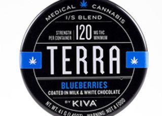 Blueberry Terra Bites